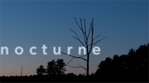nocturne-image